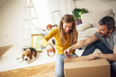 Moving Home with Pets - eXpert Man and van Loddon