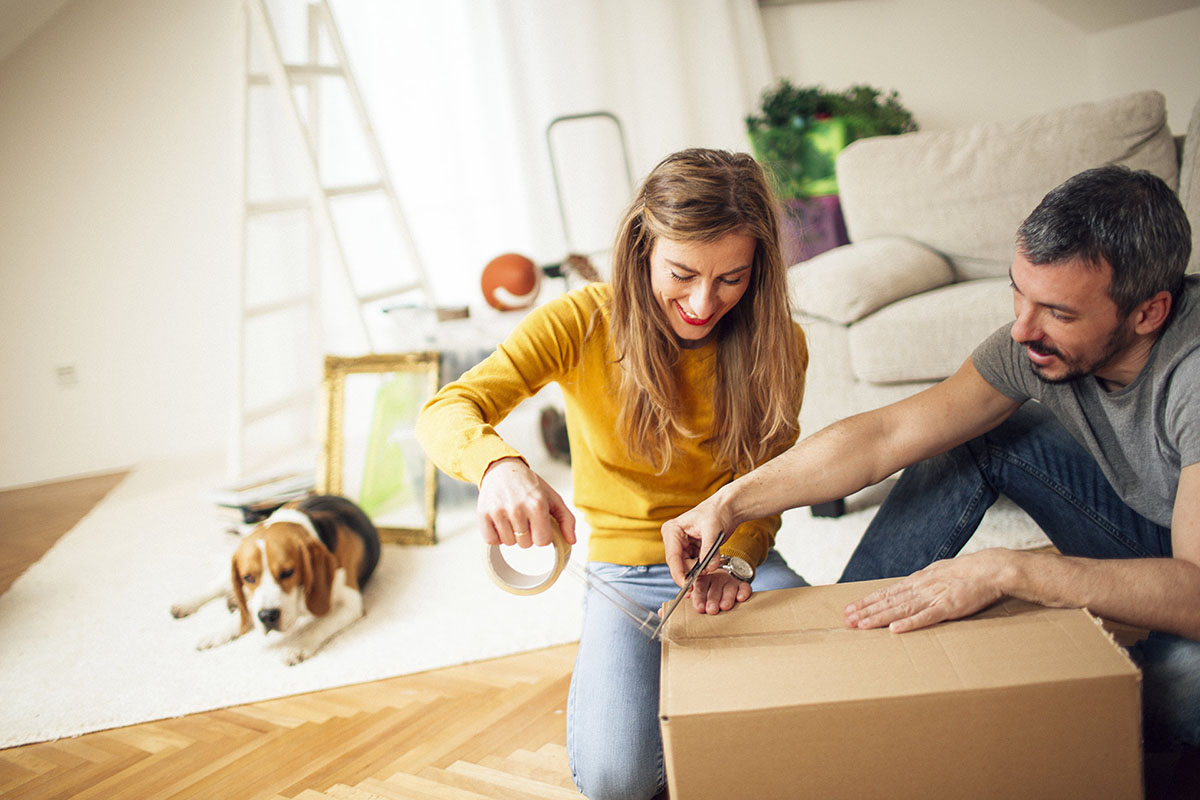 Moving Home with Pets - eXpert Man and van Loddon valuable items packing when moving home, prepare for your move